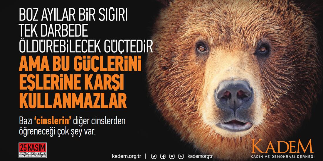 25 Kasım Kadına Yönelik Şiddetle Mücadele Günü_türkiyenin_reklamları